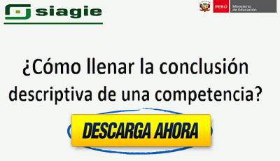 Descarga manual para llenar la conclusión descriptiva de una competencia en el SIAGIE