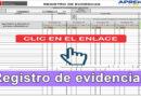 Modelo de registro para el control y recepción de evidencias