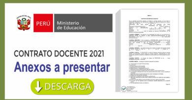 Requisitos para la adjudicación de contrato docente 2021