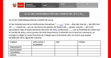 Modelo de ACTA para conformación de comité de aula