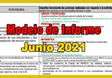 Modelo de informe desarrollado del mes de Junio 2021